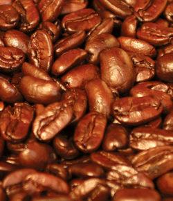 Arabica či robusta, espresso nebo turek? Pronikněte do tajů dobré kávy
